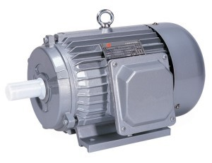 Y_Series_Three_Phase_Asynchronous_Induction_Motor-fill-300x232